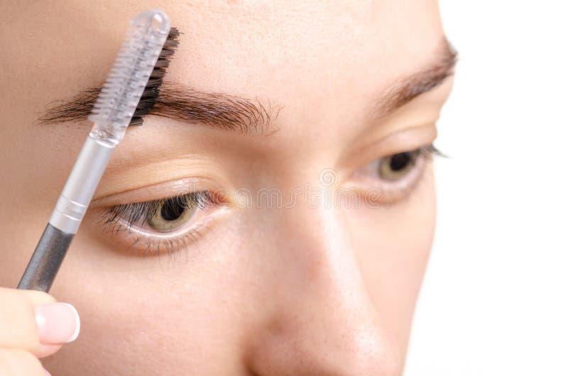 Cepillo femenino de la ceja del marrón de la forma de la ceja fotos de archivo libres de regalías