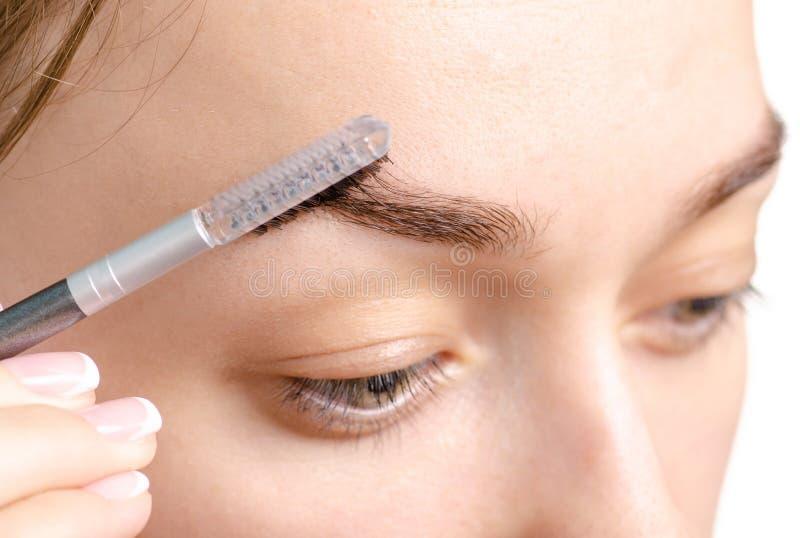 Cepillo femenino de la ceja del marrón de la forma de la ceja imagen de archivo libre de regalías