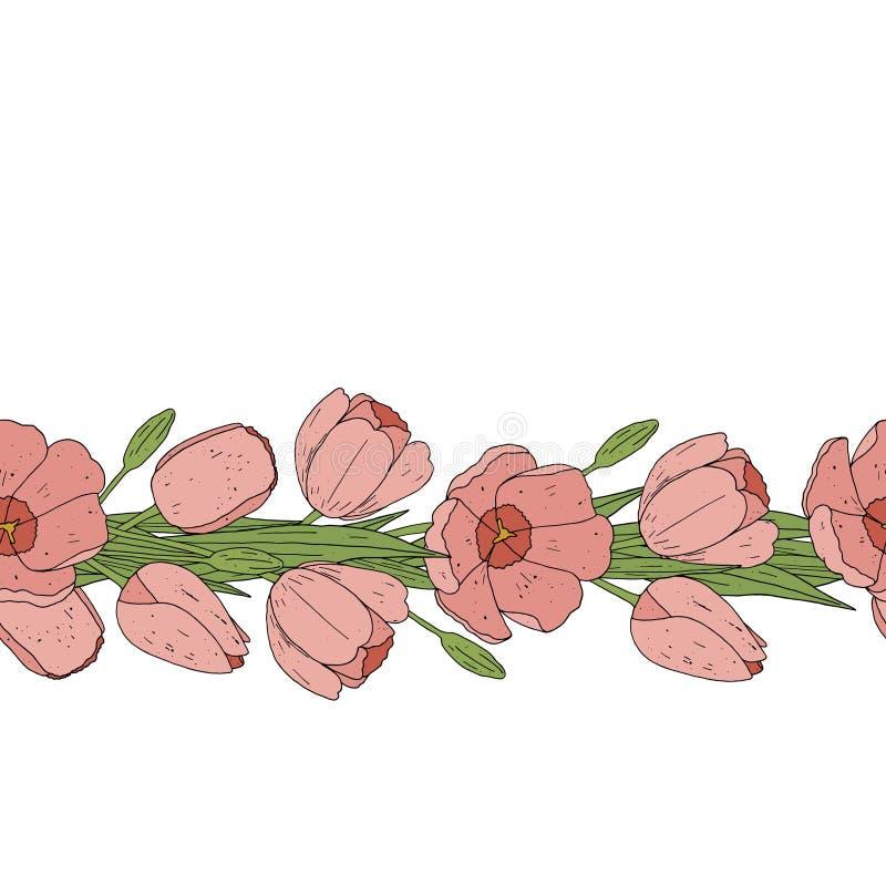 Cepillo inconsútil del modelo del tulipán Frontera floral rosada stock de ilustración