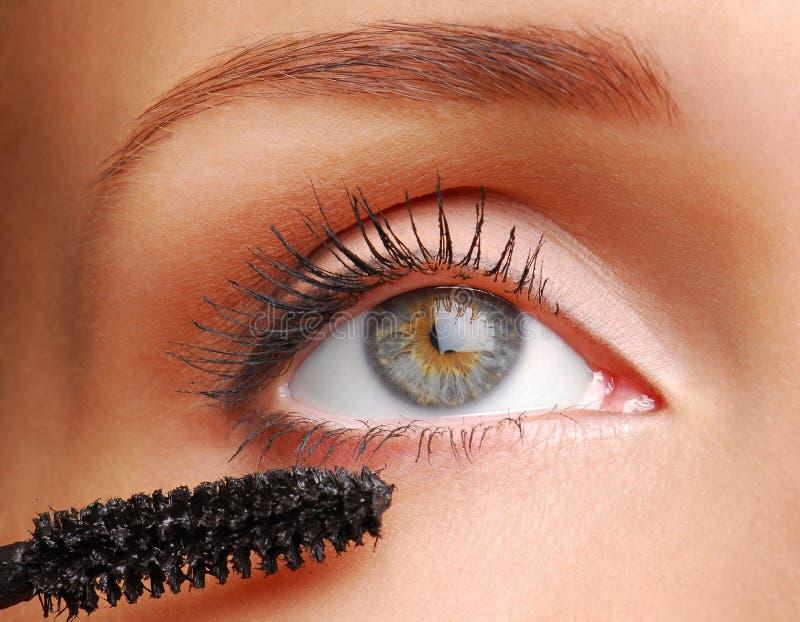 Cepillo para los eyelashs fotografía de archivo libre de regalías