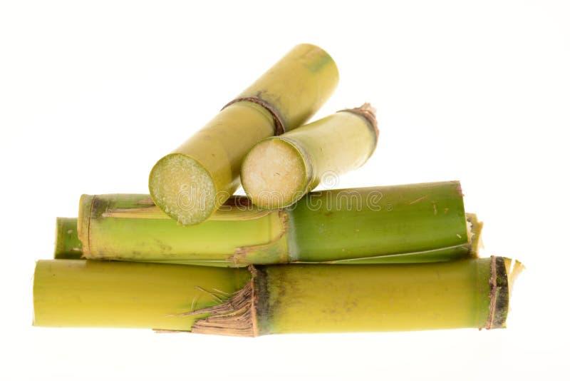 Ceppi della canna da zucchero fotografie stock