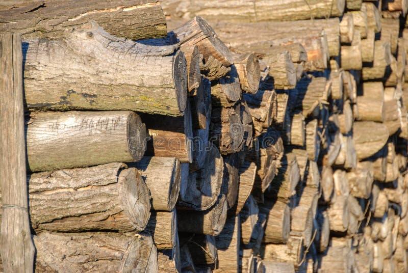 Ceppi di legna da ardere immagine stock