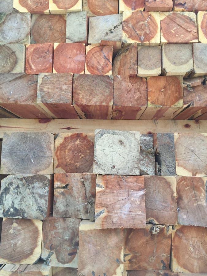Ceppi di legno del cedro fotografie stock libere da diritti