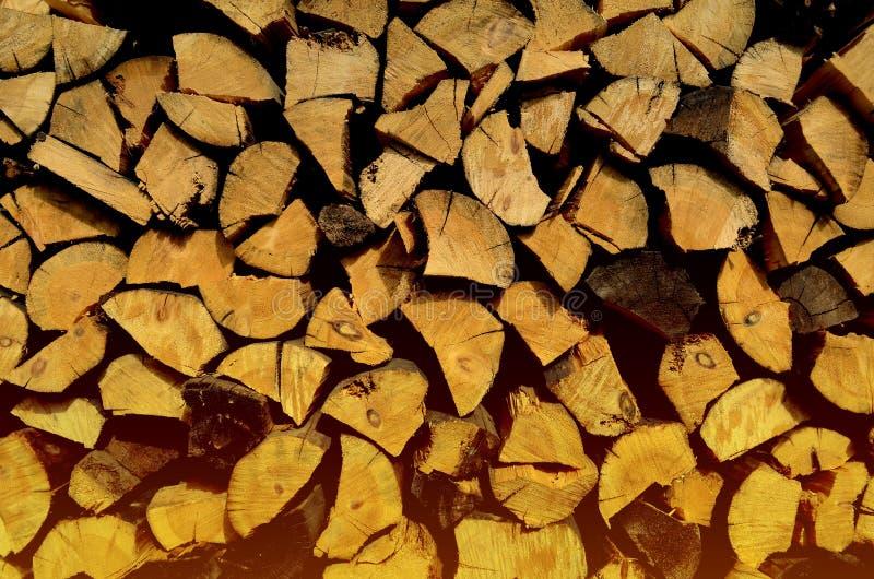 Ceppi di legno impilati nelle file, illuminate da luce solare immagine stock libera da diritti