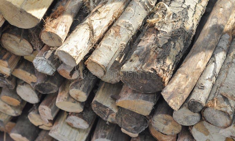 Ceppi di legno per il riscaldamento e la cottura del fuoco immagine stock