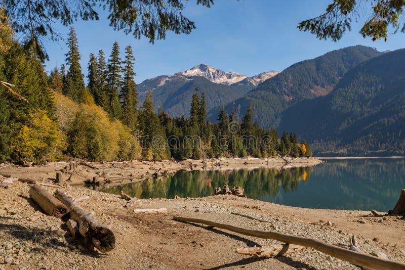Ceppi e ceppi di albero asciutti sulla riva asciutta del panettiere Lake in cascate del nord immagine stock libera da diritti