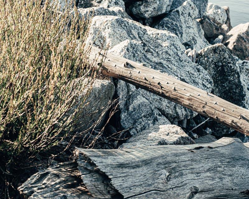 Ceppi gettati dal mare sulle pietre nel porto Combinazione di legno e di pietra Fondo immagini stock libere da diritti
