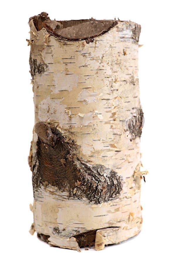 Ceppo della betulla isolato su un fondo bianco Legna da ardere di legno del ceppo fotografie stock libere da diritti