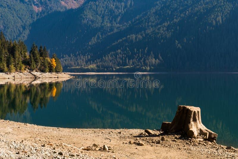 Ceppo di albero sulla riva asciutta del panettiere Lake in cascate del nord fotografie stock libere da diritti