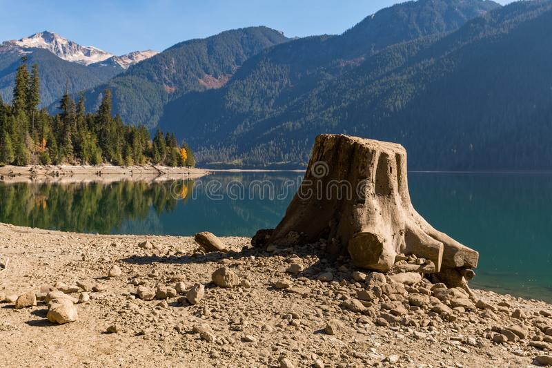 Ceppo di albero sulla riva asciutta del panettiere Lake in cascate del nord immagini stock libere da diritti