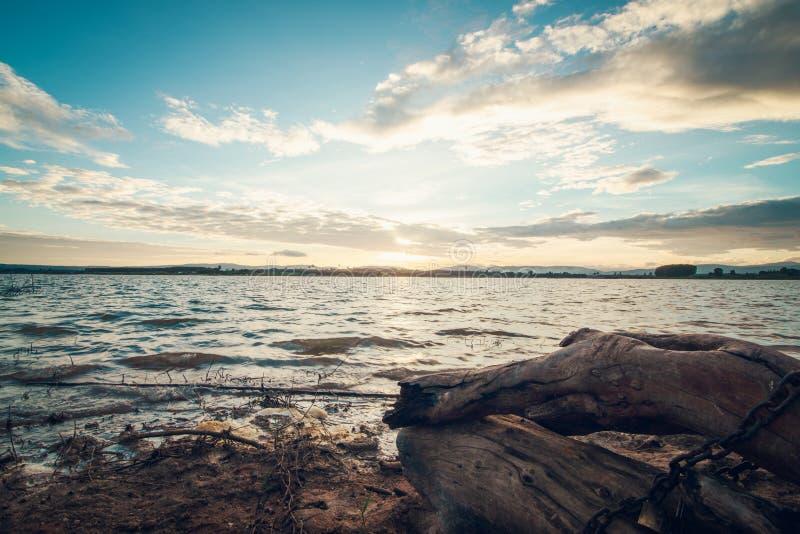 Ceppo di albero di tramonto e di morte di Lanscape fotografia stock