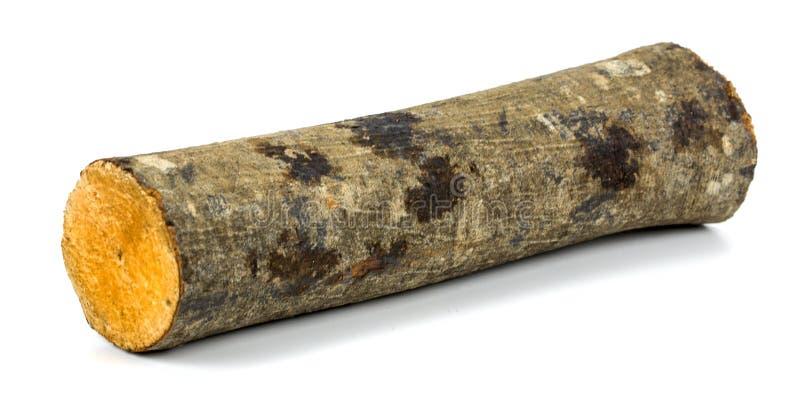 Ceppo obsoleto di legno fotografia stock libera da diritti