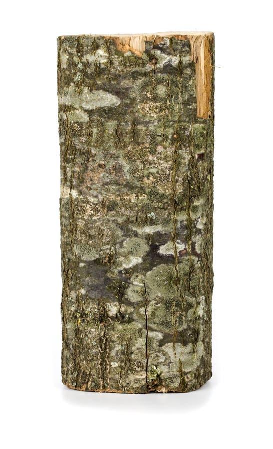 Ceppo obsoleto di legno fotografia stock