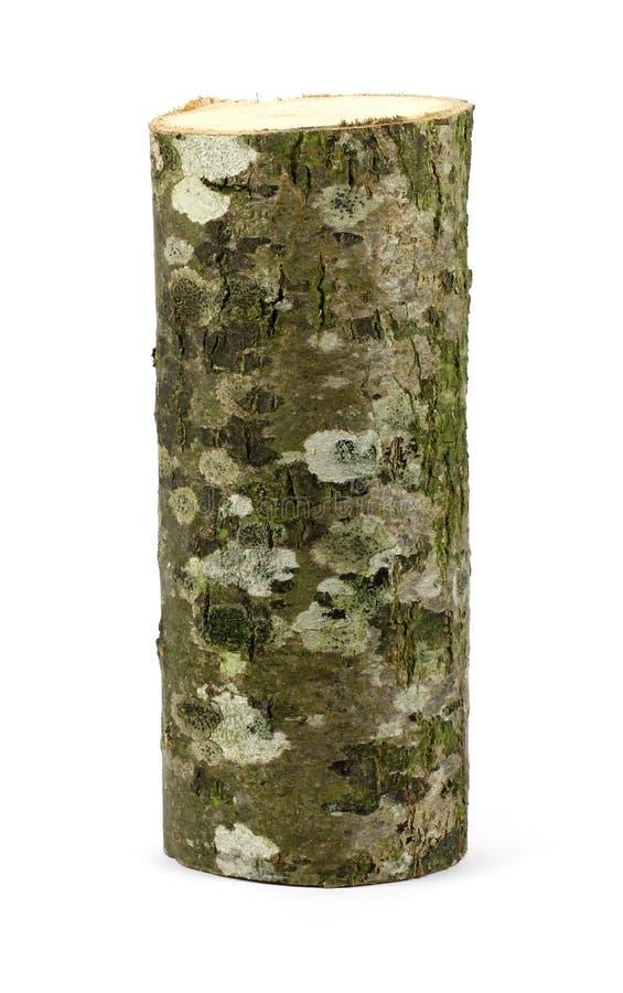 Ceppo obsoleto di legno Vista superiore Isolato su un bianco fotografia stock libera da diritti