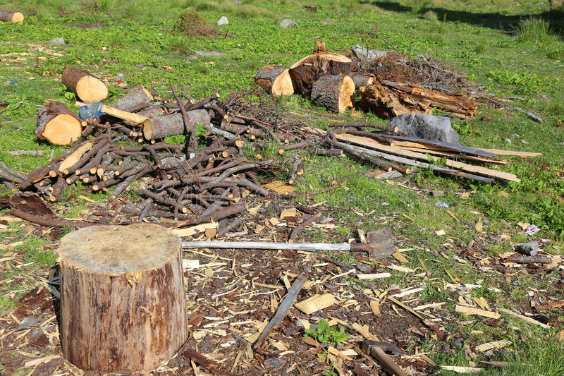 Ceppo - un posto per tagliare legno fotografia stock libera da diritti