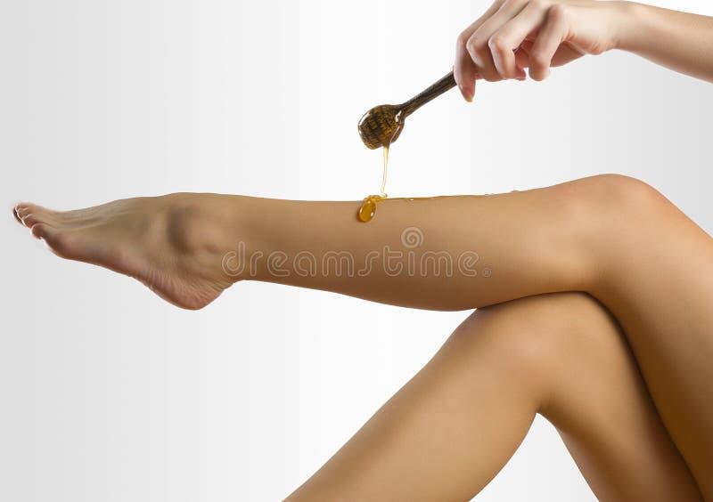 Cera do mel imagem de stock