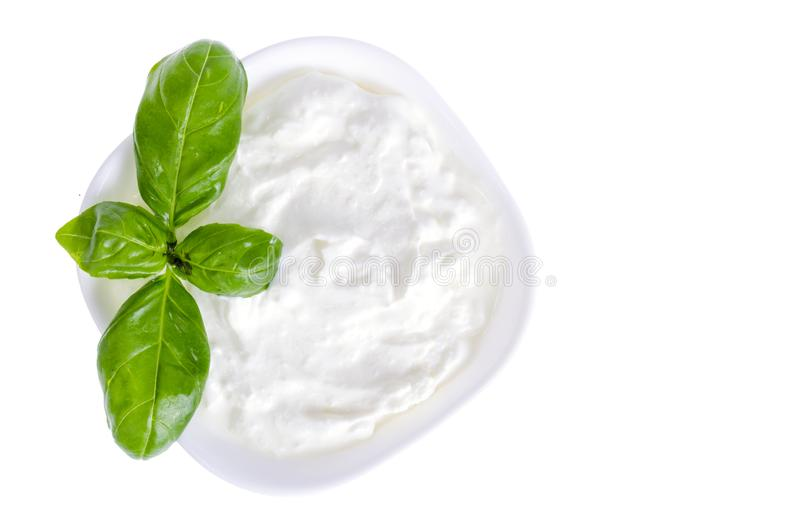 Ceramic bowl with white natural yogurt and green basil leaves. royalty free stock photo