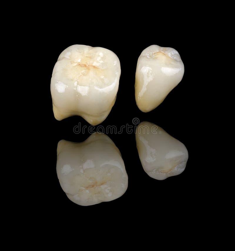 Ceramic Crowns Stock Image