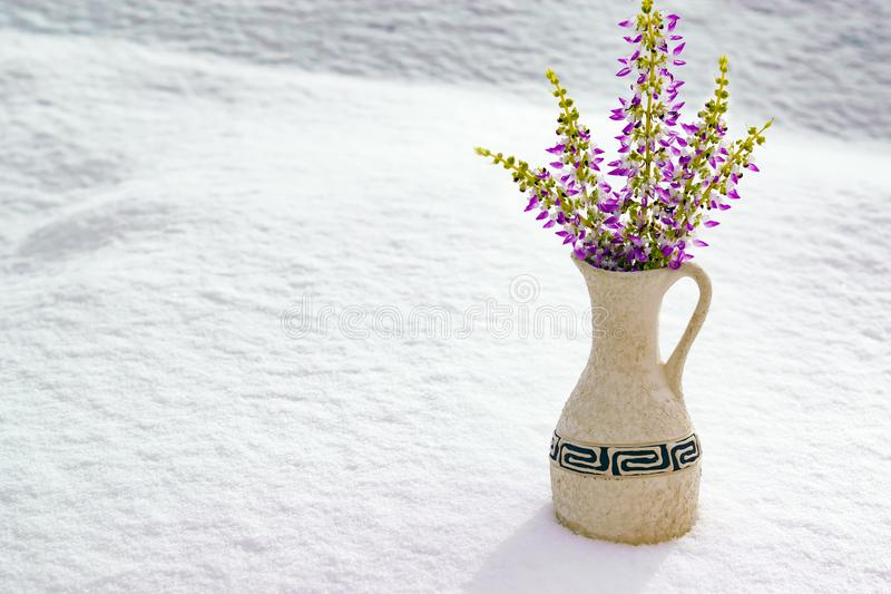 Ceramic light vase with a bouquet of small purple flowers stands on natural snow, winter unusual landscape,. Copy space royalty free stock photos