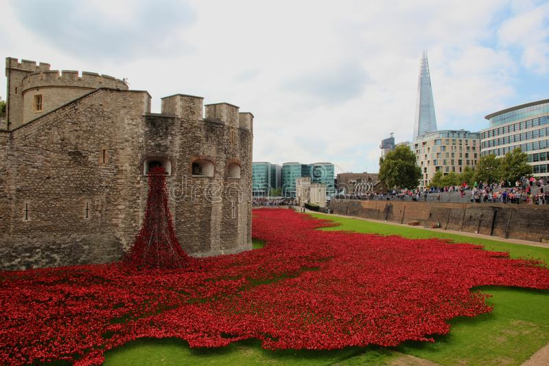 Ceramic poppies at Tower of London. Blood Swept Lands and Seas of Red - The Tower of London remembers the first World War. Teams of volunteers are installing 888 stock photo