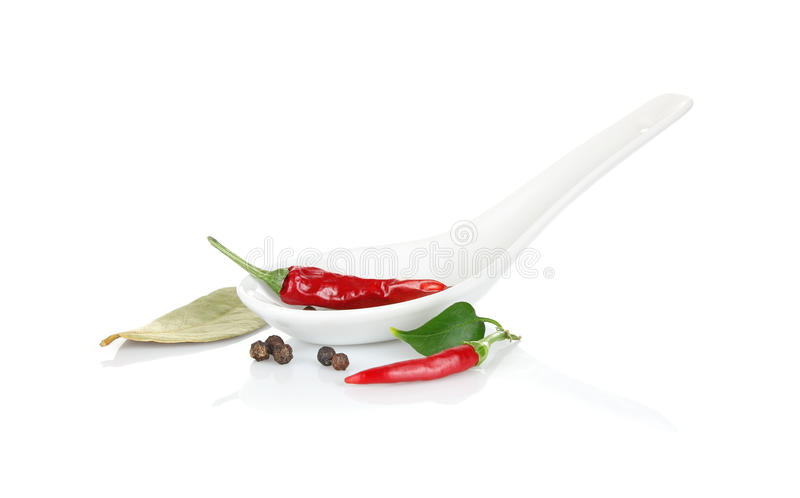 Ceramic spoon with spice. On white background royalty free stock photos