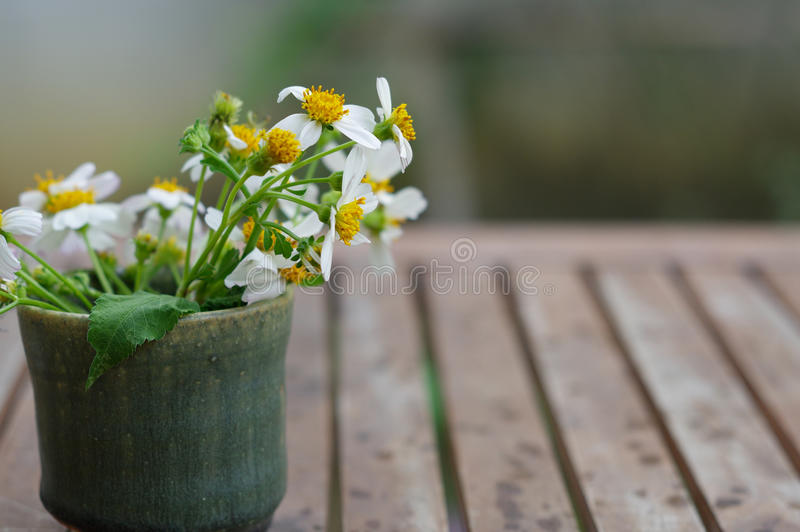 Ceramic tea cup on wooden table with wild daisy flowers. Inside royalty free stock images
