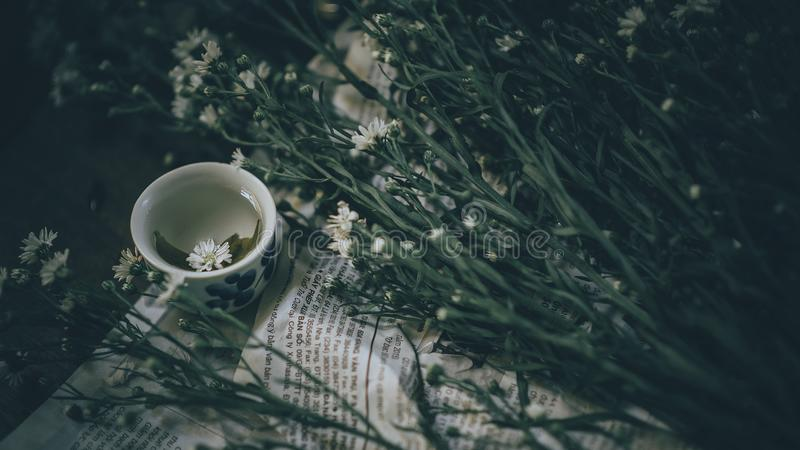 Ceramic Teacup Near White Flowers With Plant stock photo