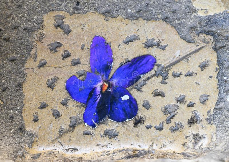 Ceramic violet imbedded in a cobblestone in the `Violet village`, Tourrettes sur Loup in Provence, France. Pictured is a ceramic violet imbedded in a cobblestone royalty free stock photo