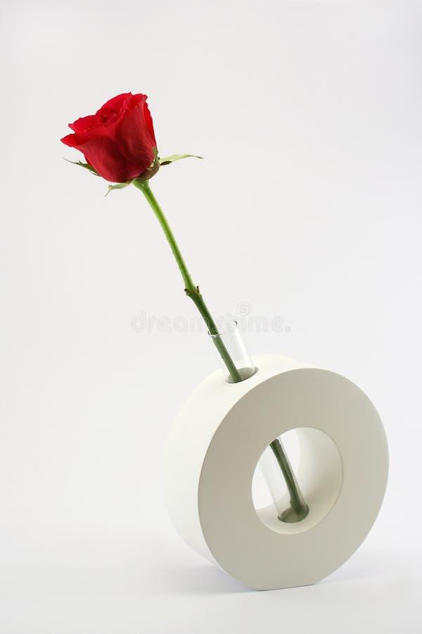 ceramicznej czerwieni róży pojedyncza waza obrazy royalty free