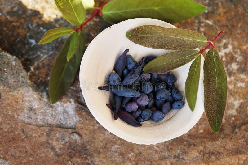 Ceramiczny puchar z banksj jagodami zdjęcie royalty free