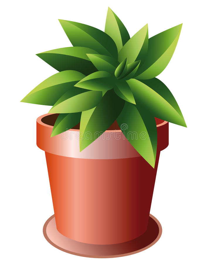 ceramiczny zielonej rośliny garnek royalty ilustracja