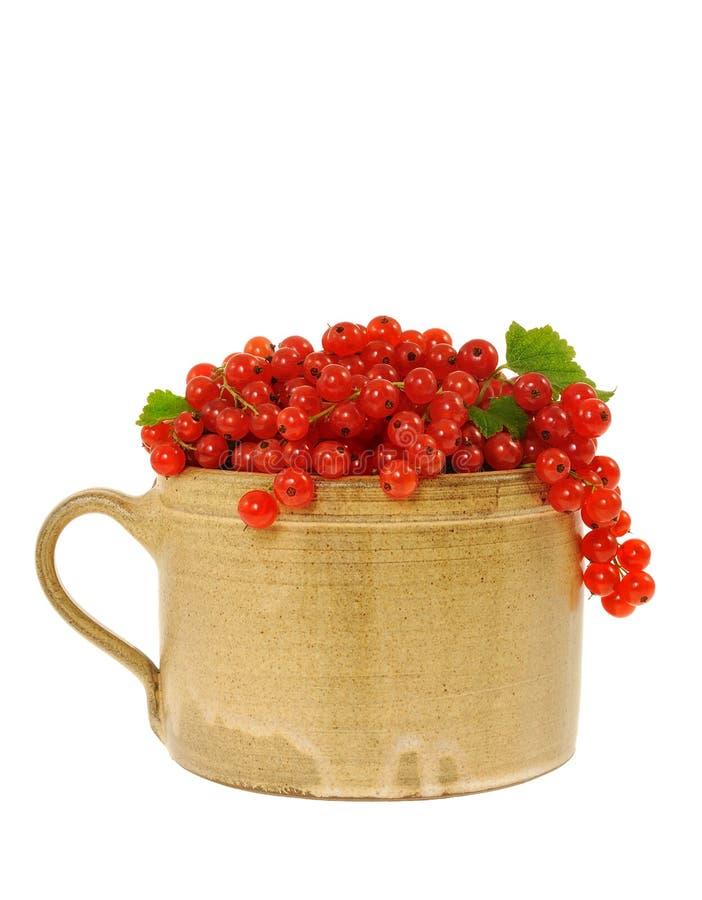 Ceramisch kophoogtepunt van verse rode aalbesbessen. royalty-vrije stock fotografie