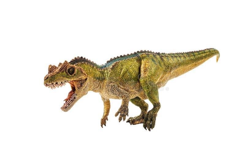 Ceratosaurus, δεινόσαυρος στο άσπρο υπόβαθρο στοκ εικόνες
