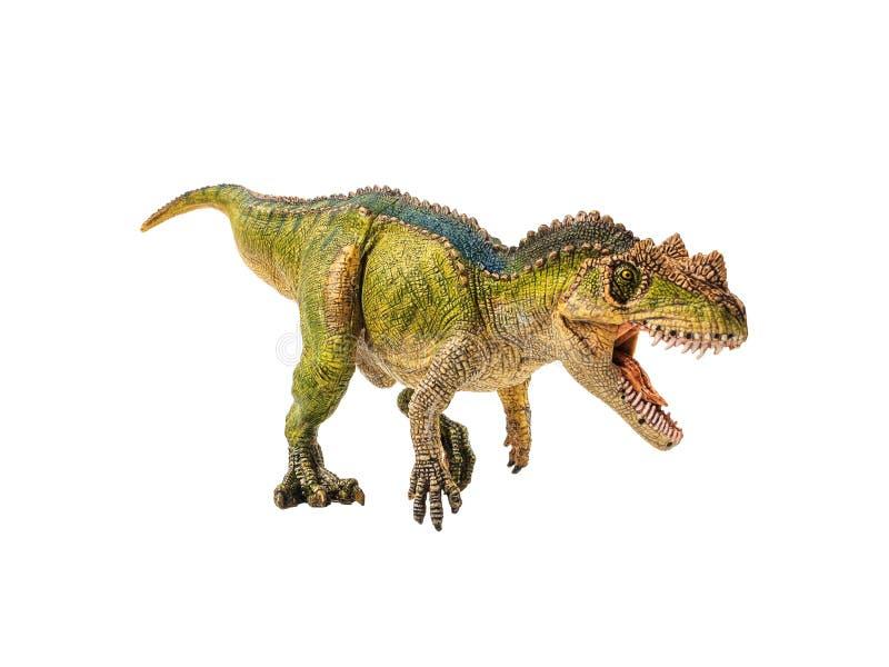 Ceratosaurus, δεινόσαυρος στο άσπρο υπόβαθρο στοκ εικόνα με δικαίωμα ελεύθερης χρήσης