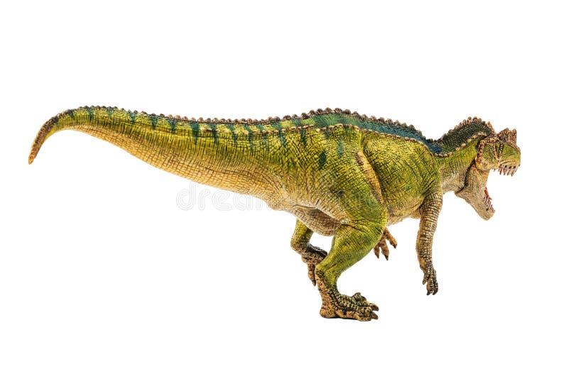 Ceratosaurus, δεινόσαυρος στο άσπρο υπόβαθρο στοκ φωτογραφίες με δικαίωμα ελεύθερης χρήσης