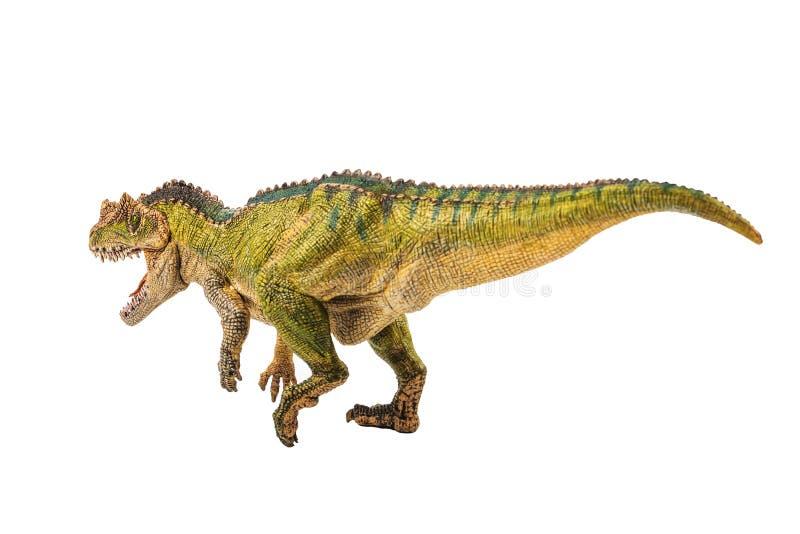 Ceratosaurus, δεινόσαυρος στο άσπρο υπόβαθρο στοκ εικόνα