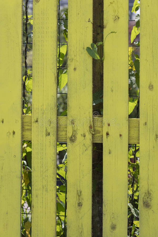 Cerca amarela na casa fotografia de stock
