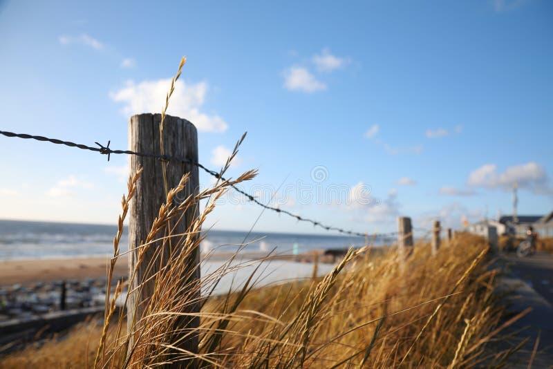Cerca ao longo de uma praia, cercada pela grama em um dia ensolarado com azul fotos de stock royalty free