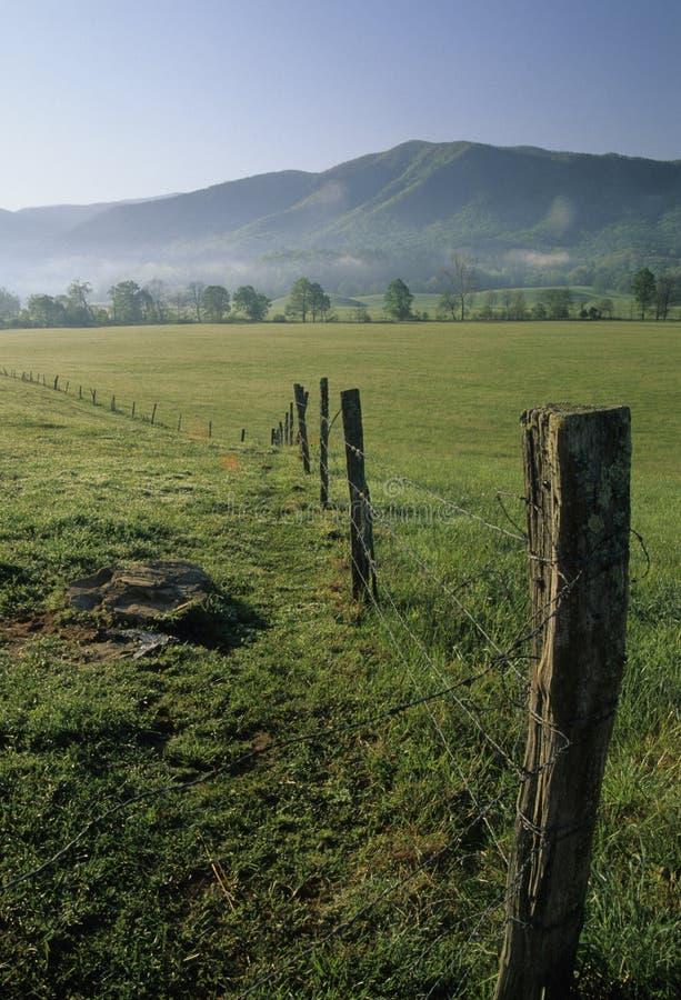 Cerca, campos, mola, angra de Cades fotos de stock