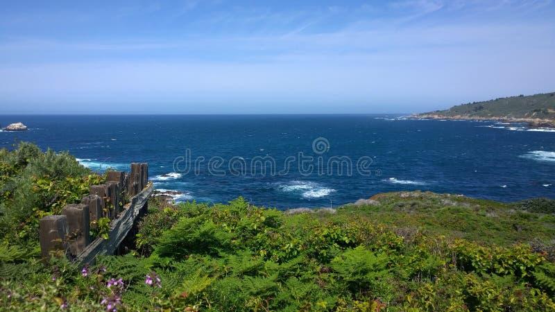Cerca da costa de Big Sur foto de stock