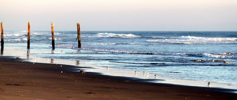 Cerca da praia foto de stock