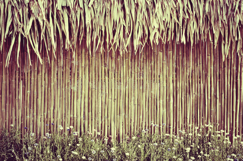 Cerca de bambu com flor fotos de stock royalty free