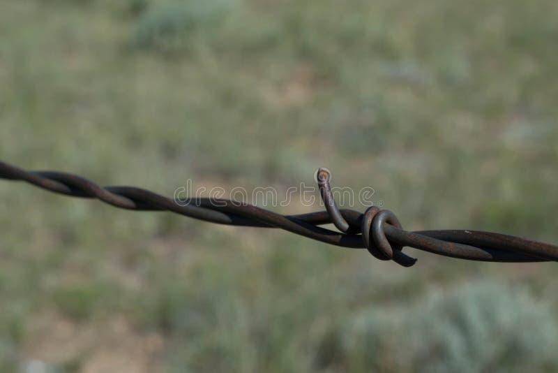 Cerca de Barbwired em pradarias de Wyoming fotografia de stock