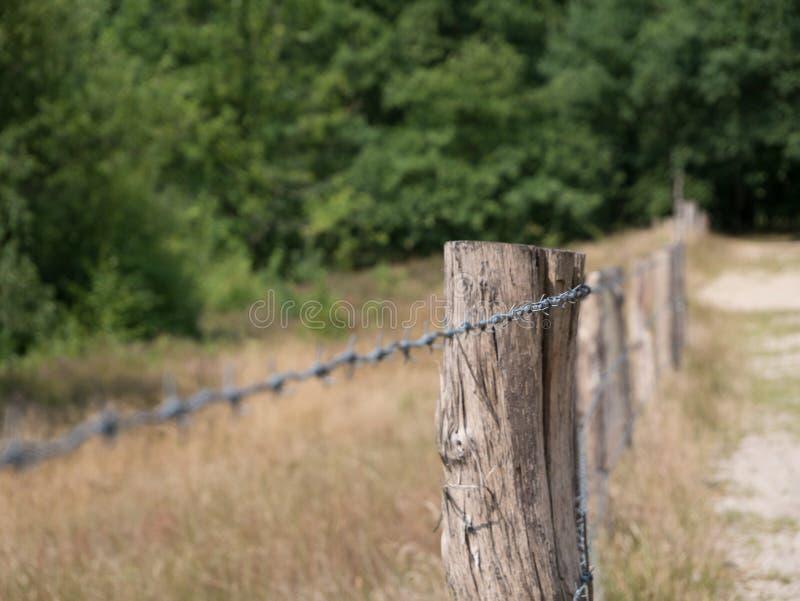 Cerca de fio de Barb no dia com foco seletivo no polo de madeira fotos de stock