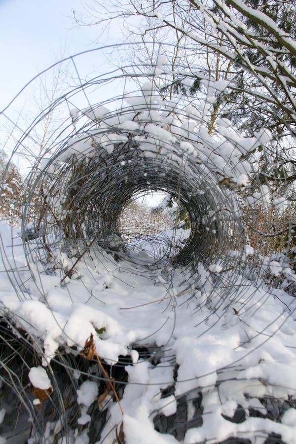 Cerca de la alambrada en el bosque fotografía de archivo