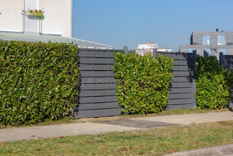 cerca de madeira cinzenta moderna do jardim foto de stock