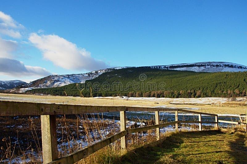 Cerca de madeira com vista no fundo imagens de stock royalty free