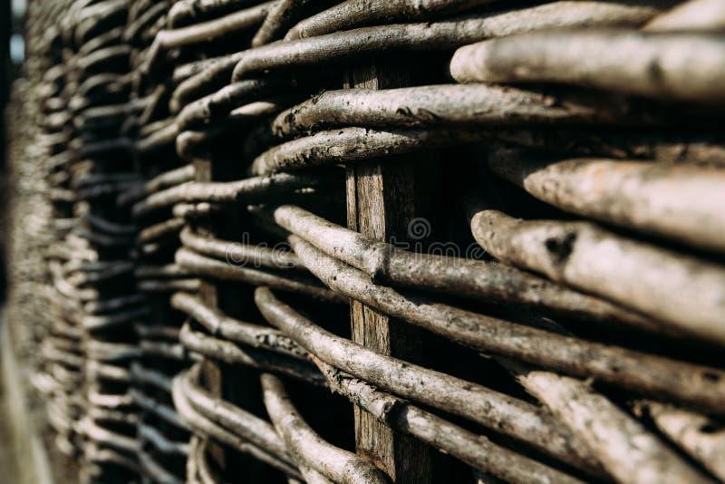 Cerca de madeira, montada dos ramos marrons flexíveis foto de stock royalty free