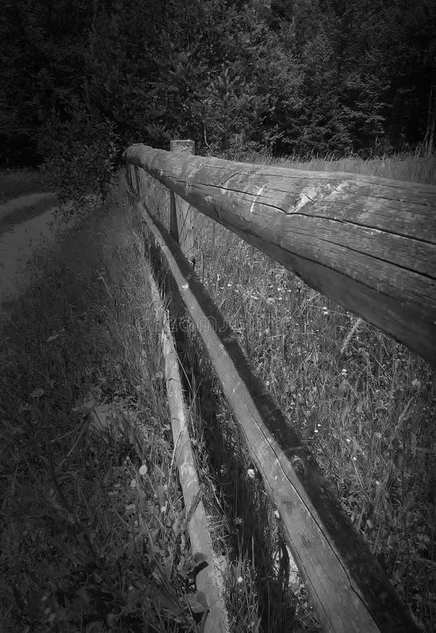 Cerca de madeira, natural imagens de stock