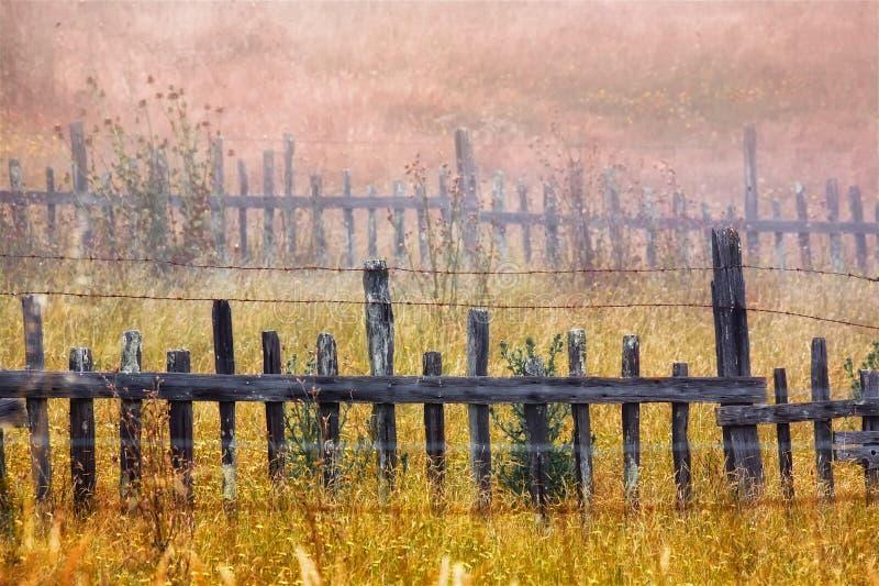 Cerca de madeira no campo fotos de stock royalty free